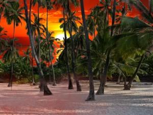 Hawaii - Sonnenuntergang800