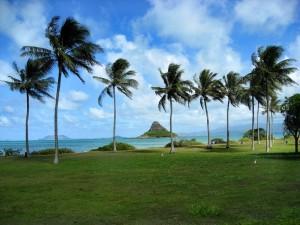 Hawaii North Shore Oahu